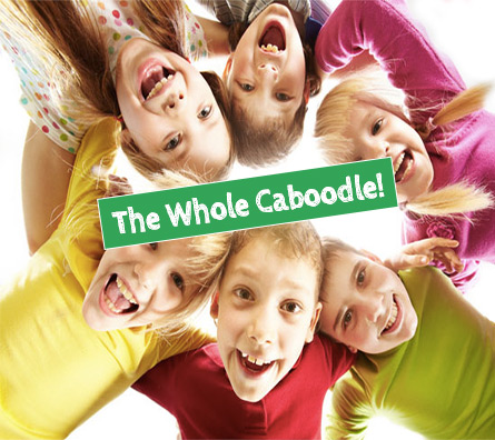 whole-caboodle